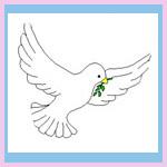 espirito-santo-comunhão