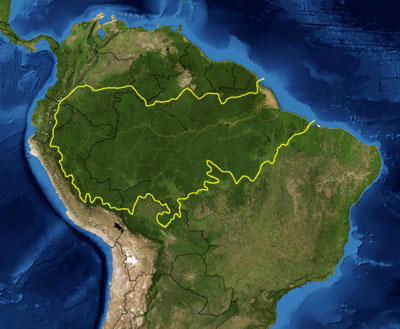 Amazonia floresta - Dia da Amazônia - 05 de Setembro