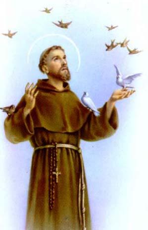 sao francisco - Dia Mundial dos Animais - 4 de Outubro