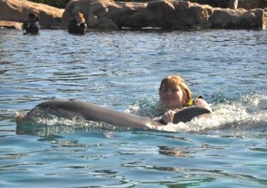 discovery cove - Os melhores parques aquáticos do mundo