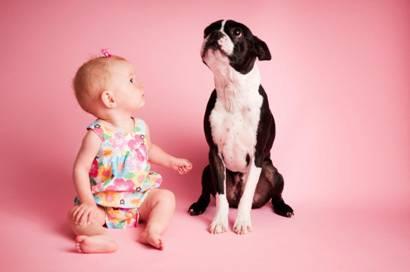 animais e as criancas - Animais de estimação são excelentes companheiros para crianças