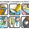 Diferenças e Semelhanças entre Dengue - Zika Vírus - Chikungunya